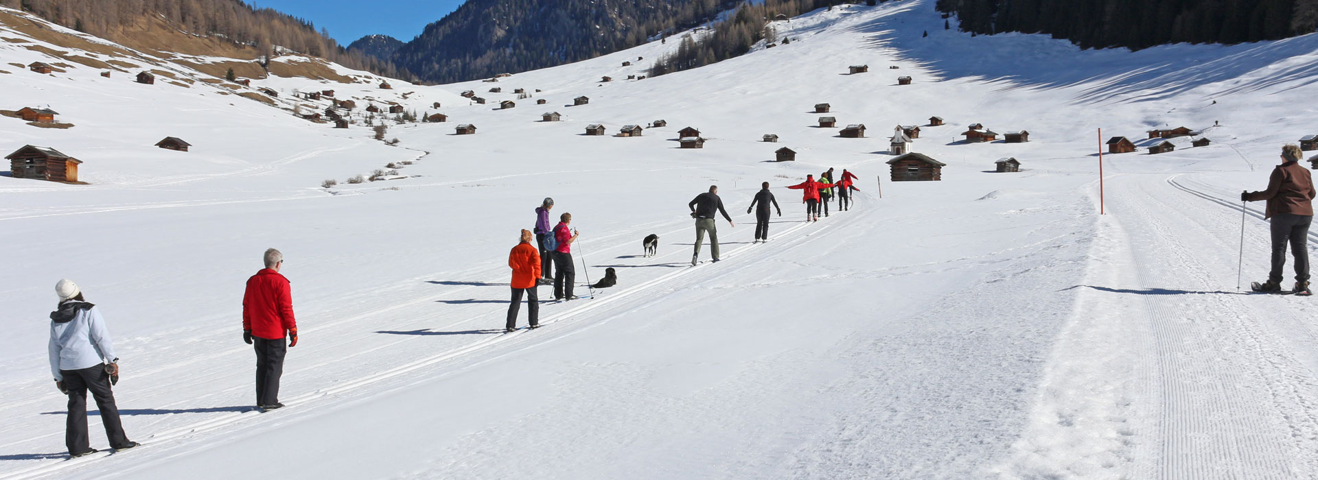 Cross Country Pool Service : Cross country skiing